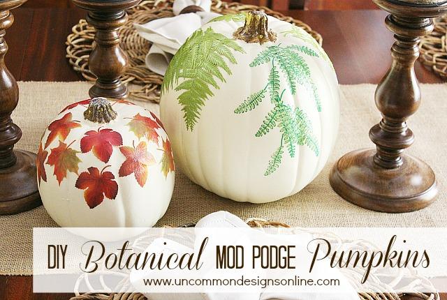 DIY_botanical_pumpkins_graphic
