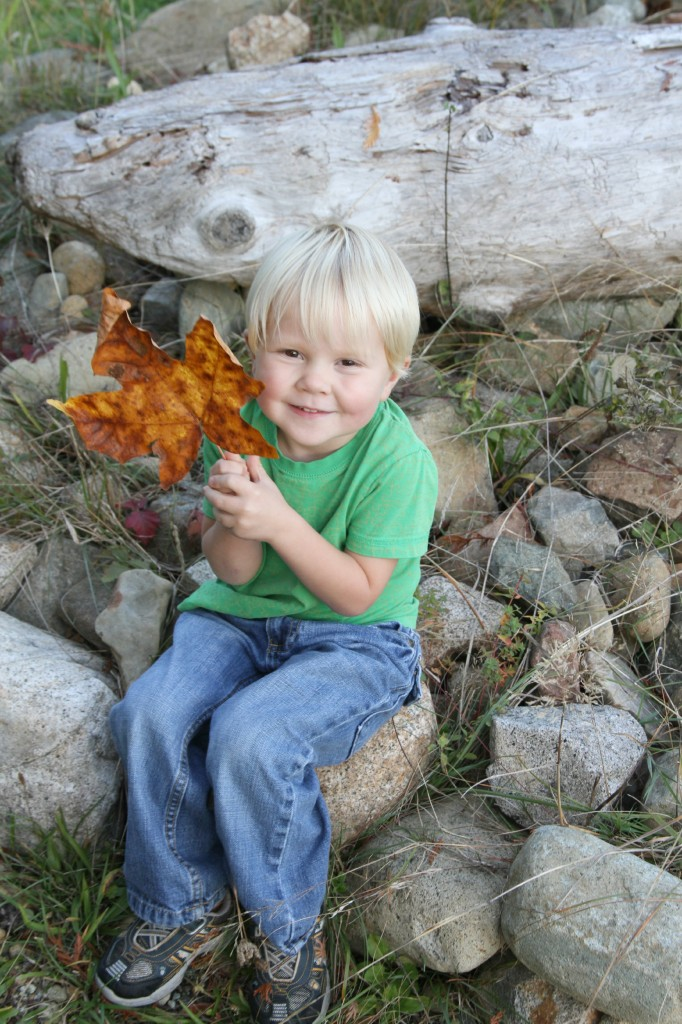Finn with leaf Thanksgiving photos